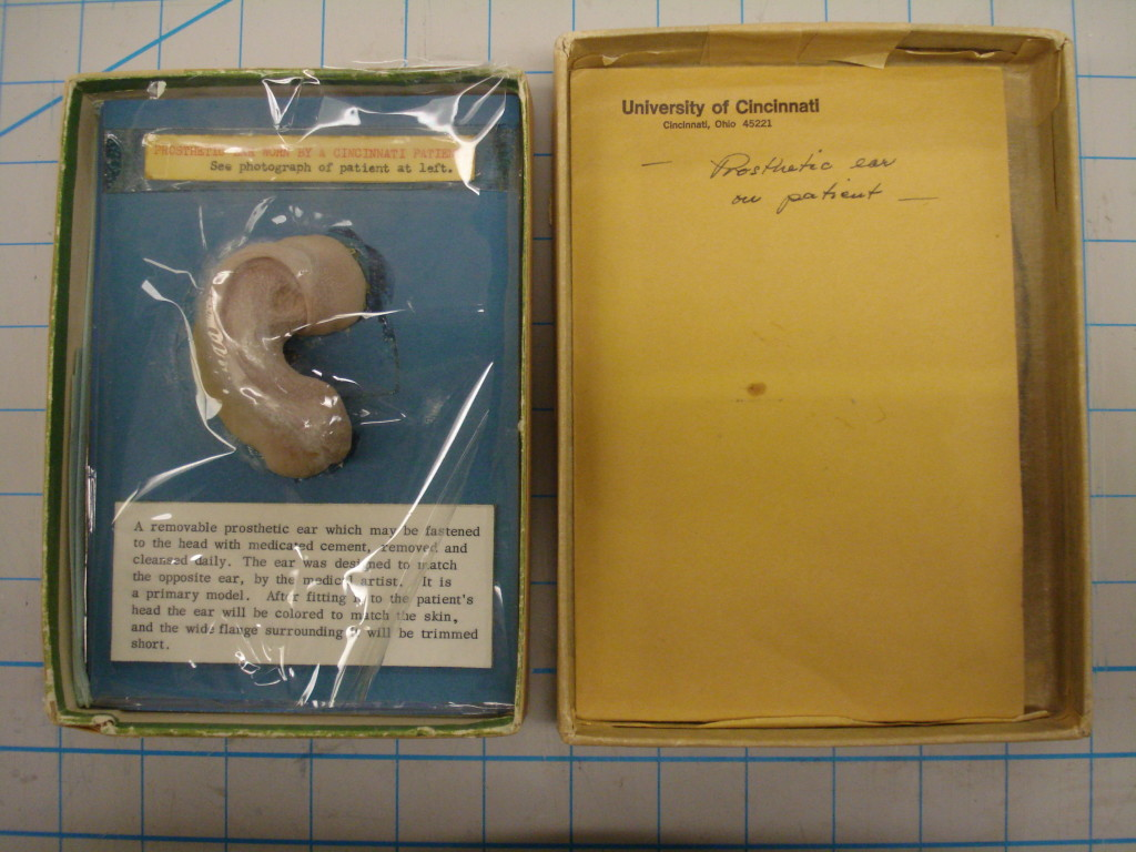 The ear and its original housing materials.  The photograph and clipping were stored in the yellow envelope.