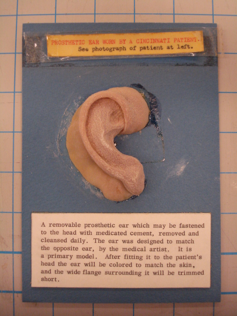 Note the level to which the ear has shrunk over time as well as the pronounced surface texture.  There was also a whitish residue visible on the surface where it came in contact with its cellophane wrapper.